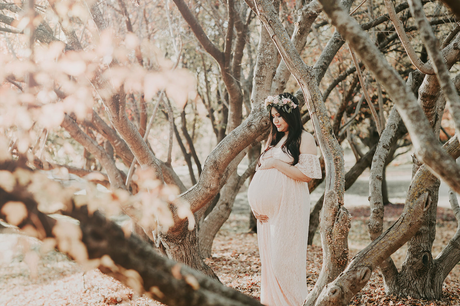 Kansas City Maternity photographer outdoor with trees